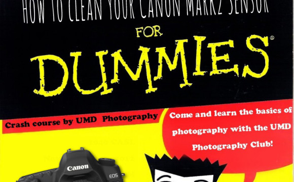 How to clean your Canon Mark II for dummies